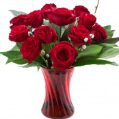 12 Red Roses in a Vase
